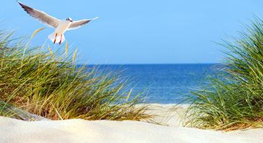 Nordsee & Urlaub